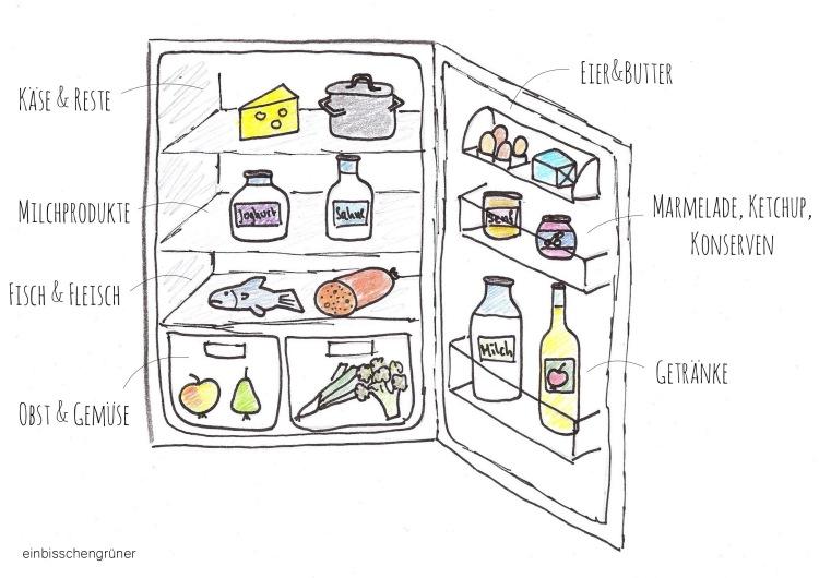 Kühlschrank richtig einräumen gegen Lebensmittelverschwendung