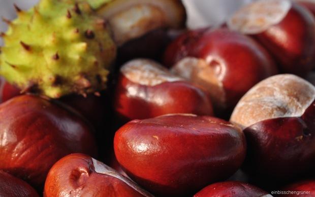 DIY Kastanienwaschmittel: ökologisch, günstig, verpackungsfrei