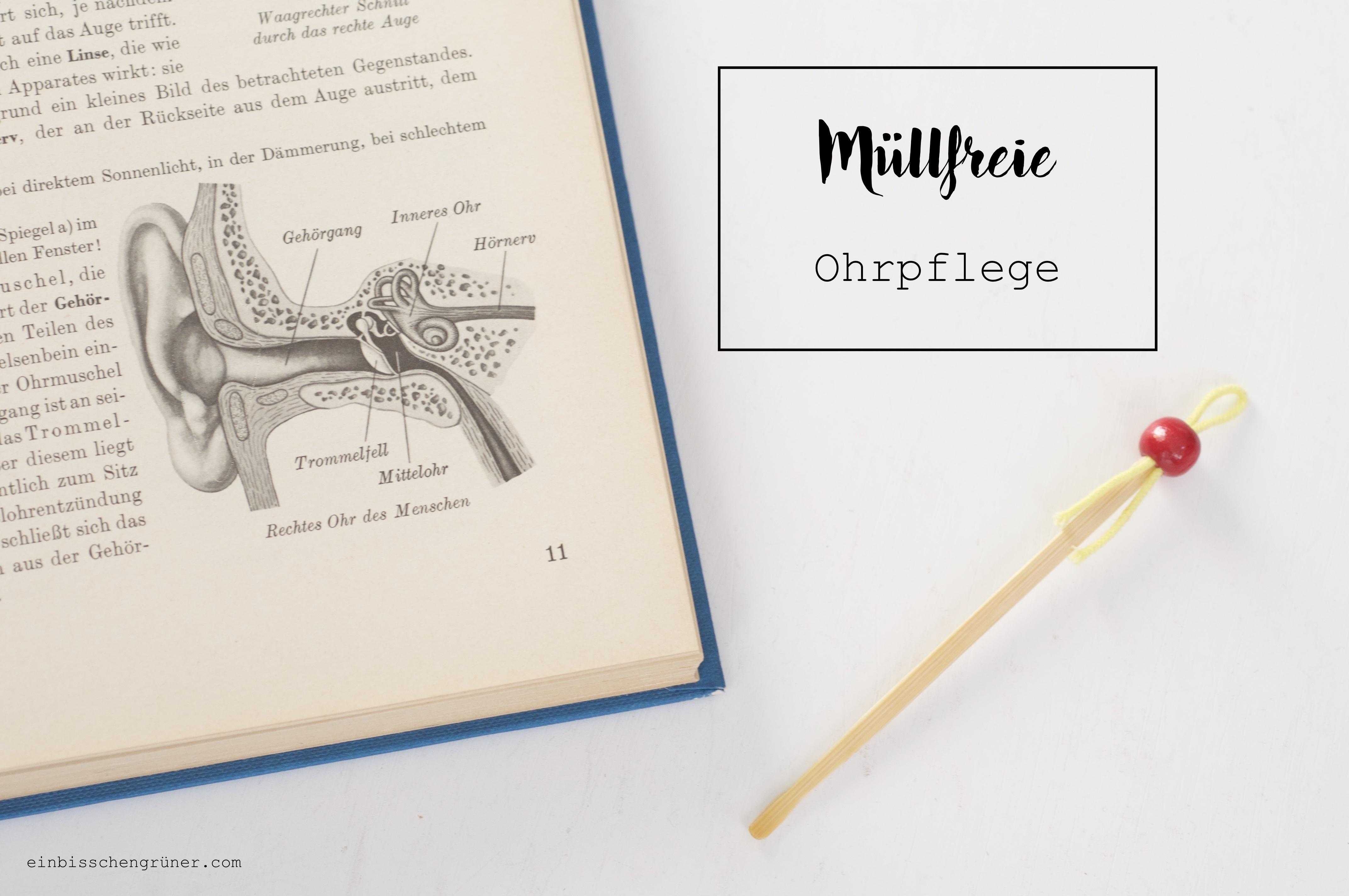 Erfreut Ohrmuschel Anatomie Diagramm Galerie - Menschliche Anatomie ...